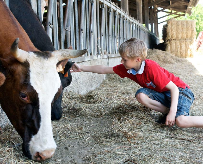 Visite d'une ferme pédagogique pour les enfants