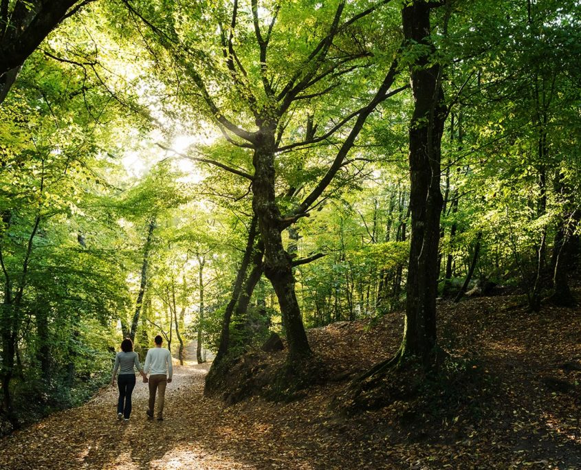Balade en amoureux dans la Forêt de Brocéliande au Val sans retour
