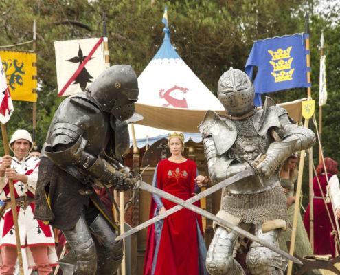 La Pentecote du Roi Arthur à Brocéliande pour la Fête de la Bretagne