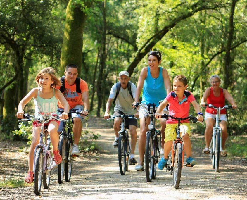 Balade à vélo en famille en forêt